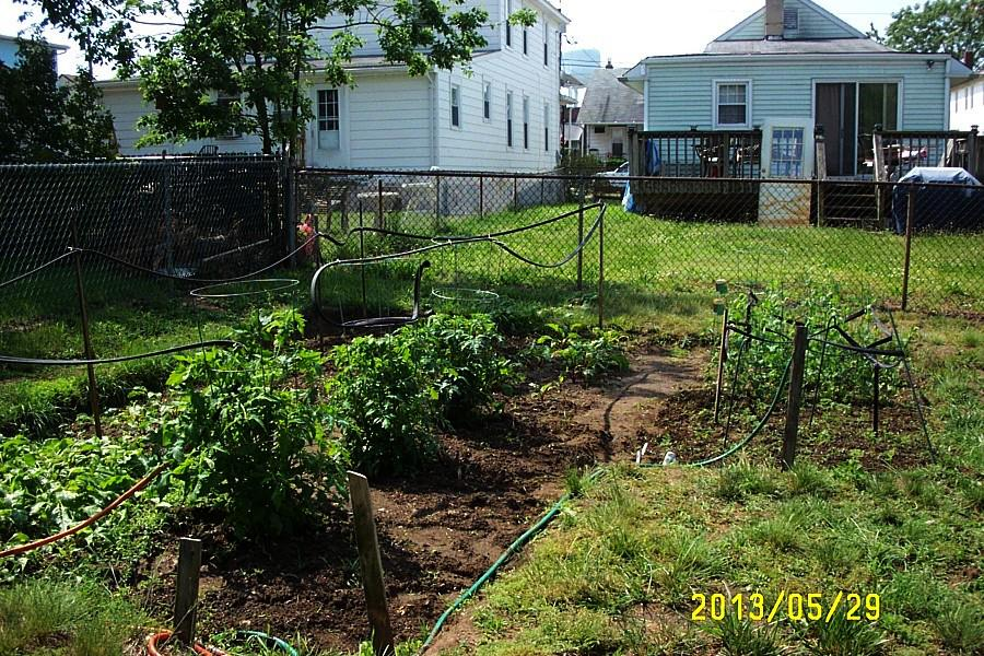 Garden Overview 29-May-2013.