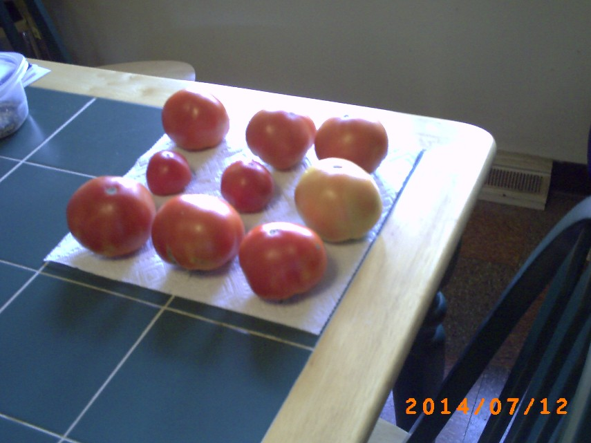 Nine Tomatoes. Imperfect but very tasty.